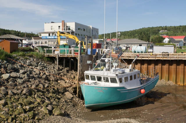 Fundy (3 of 7)