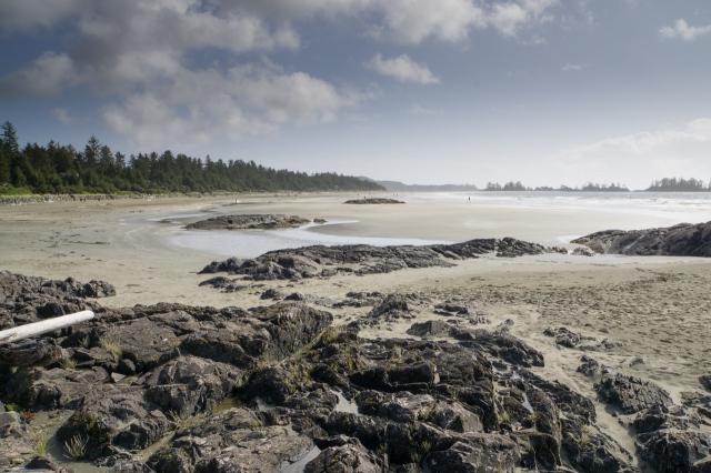 chesterman beach (1 of 7)