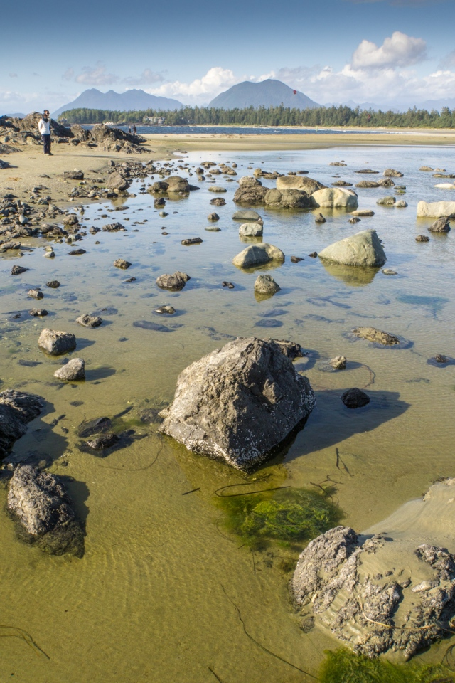 chesterman beach (7 of 7)
