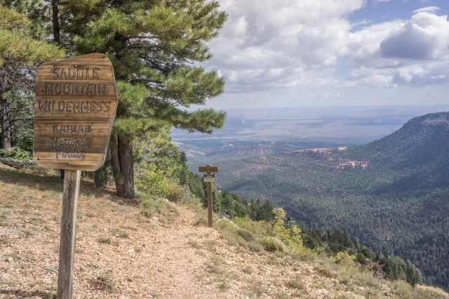 stateline to south rim (40 of 92)